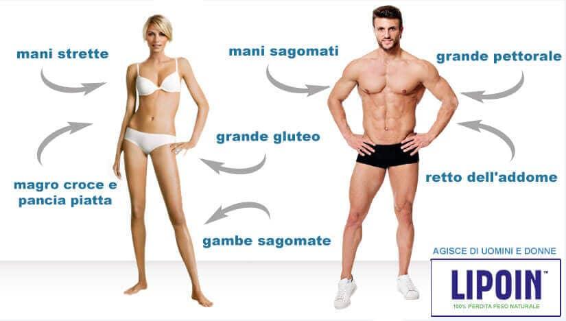 Grafico delle pillole per la perdita di peso naturale Lipoin, per gli uomini e le donne.